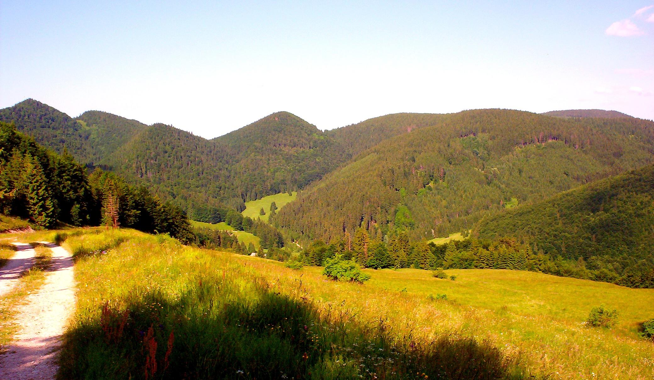 Danková dolina pod Čuntavou