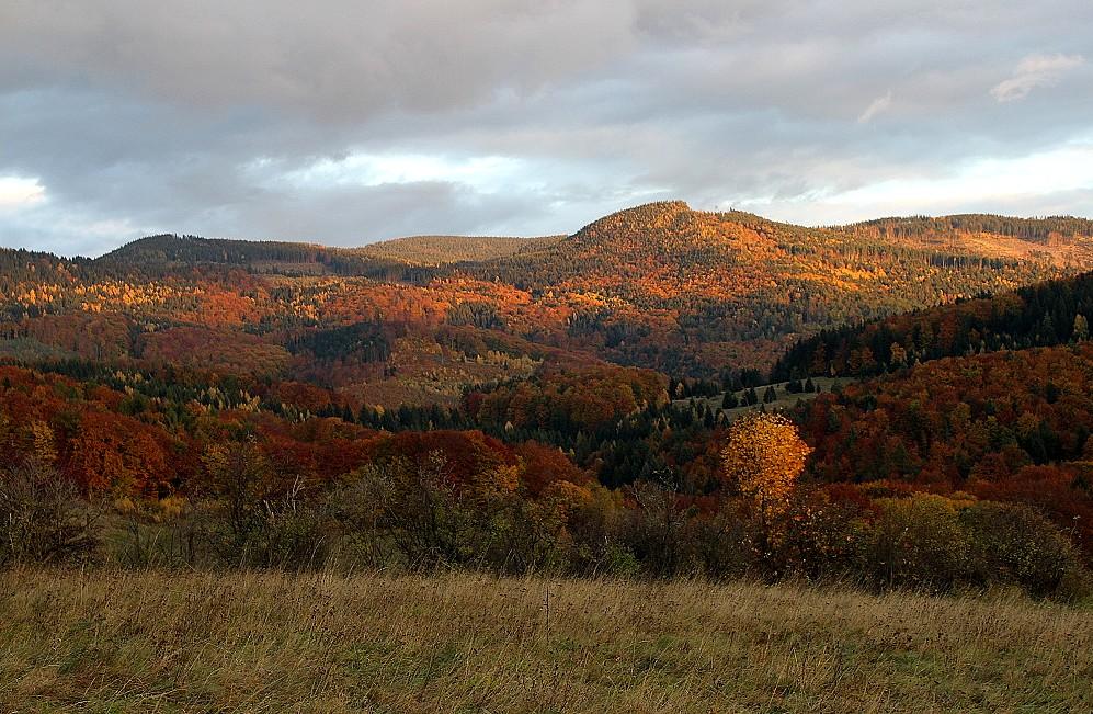 Suchý vrch od Starca  zo dňa 30.10.2009